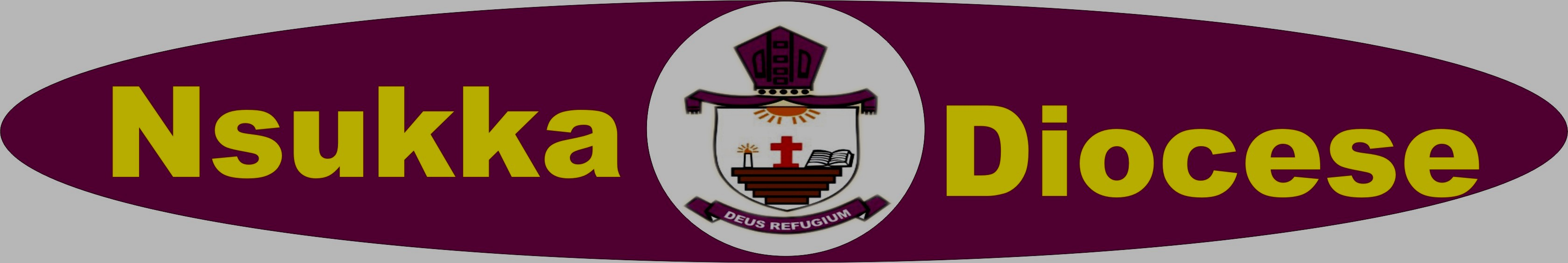 DIOCESE OF NSUKKA